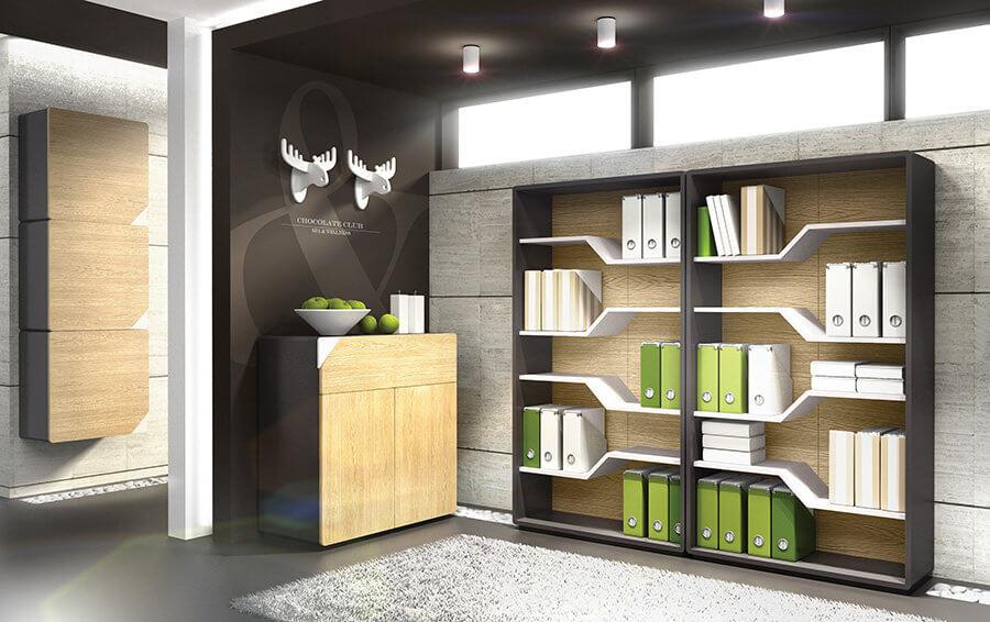 biblioteci camere tineret