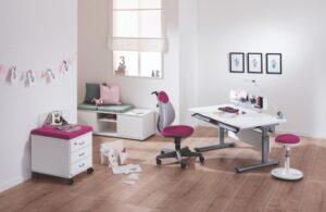 birou elegant copii