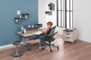 birou reglabil profesional copii